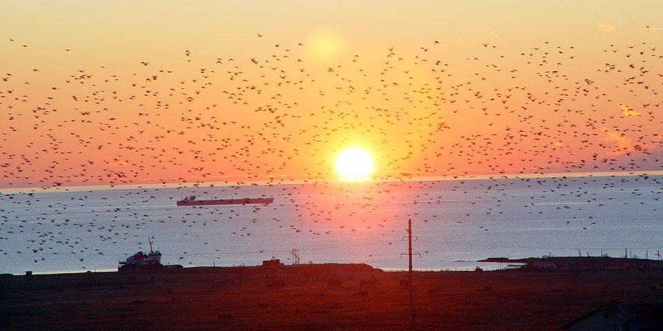 Закат Крым